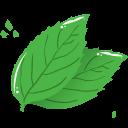 mint leaf icon