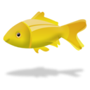 fish, animal icon