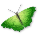 animal, insect, butterfly icon