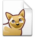cat, file icon