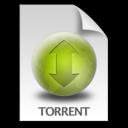 Torrent Document icon