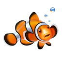 nemo, clown fish, fish icon