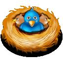 birds, twitter, nest icon