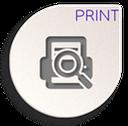 print preview icon