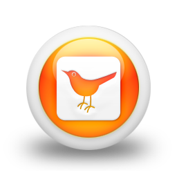 social, square, sn, twitter, social network, bird, animal icon