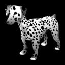 dog, animal, dalmatian icon
