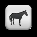 animal,horse icon