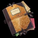 Folder Library icon