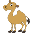 camel,animal icon