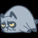 Cat, Grumpy icon