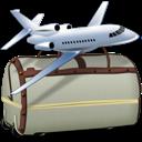 Airplane, Bags, Tourism, Travel icon