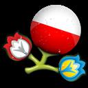 Euro, Poland icon