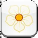 social, sn, magnolia, social network icon