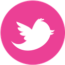 twitter, pink, media, social, round icon