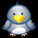 penguin,animal icon