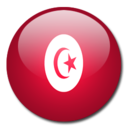 tunisia,flag,country icon