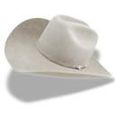 Hat cowboy white icon