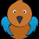 bird, tweet, twitter bird, social, twitter icon