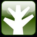 plant, chunky, tree icon