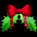 christmas,leaf icon