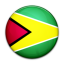 flag,guyana,country icon