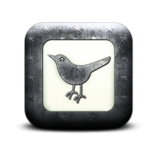 social network, social, square, bird, sn, animal, twitter icon