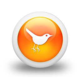 social network, bird, animal, twitter, social, sn icon