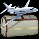 Bag's, Internet icon