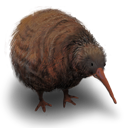 animal, flightless, kiwi, bird icon