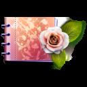 lovely catalog icon