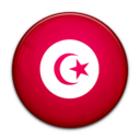 flag,tunisia,country icon