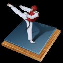 taekwondo, px icon