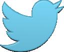 bird, twitter, single, new icon