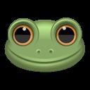 animal, frog icon