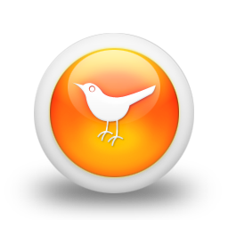 animal, bird, sn, social network, social, twitter icon