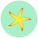 sea, summer, star, beach icon