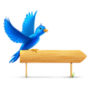 animal, sn, twitter, social, bird, social network, sign icon