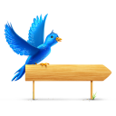 sn, twitter, sign, bird, sparkle, social, social network, animal icon