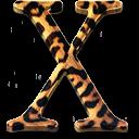 System OS X Jaguar icon