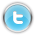 chrome, social, social network, twitter, sn icon