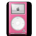 Pink Carnation Mini icon
