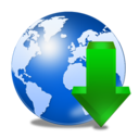 global,download icon