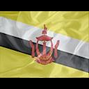 Regular Brunei icon