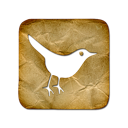 social network, animal, social, square, sn, bird, twitter icon