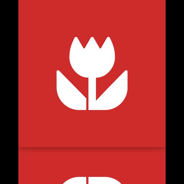 mirror, mobile, picture icon