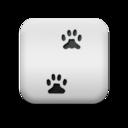 paw,prints icon