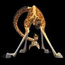 Madagascar Melman icon