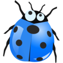insect blue icon