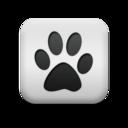 animal,cat,print icon