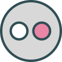 brand, flickr, social, logo, network icon